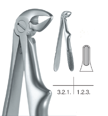 Childrens Forceps, Lower Incisors and Canines (10.681.33) Forceps - Blue & Green Inc.