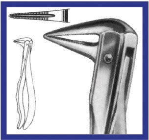 Extraction Forceps, Lower Roots (605 P) Forceps - Blue & Green Inc.