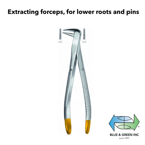 Extracting forceps, for lower roots and pins (z 208-06) Forceps - Blue & Green Inc.