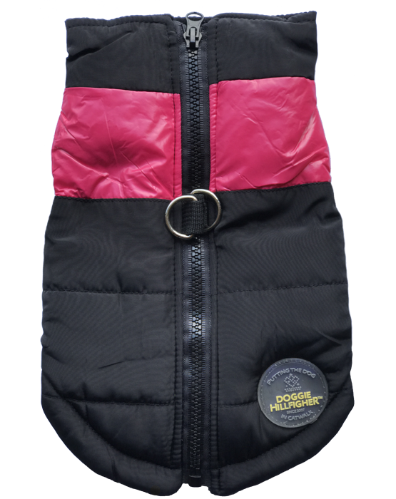 Dog harness and jacket in one
