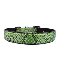 Snake skin dog collar. Green with rhinestone buckle
