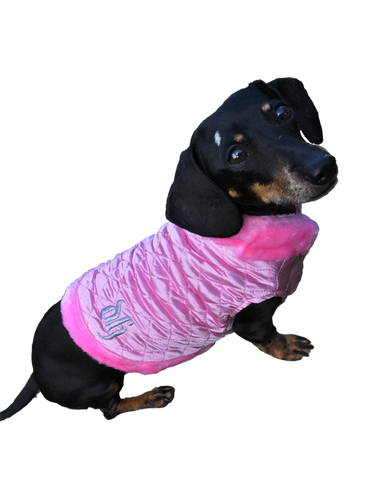 Pink dog coat with fur trimmings and DH embroided in silver
