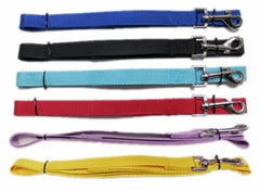 Matching dog nylon lead