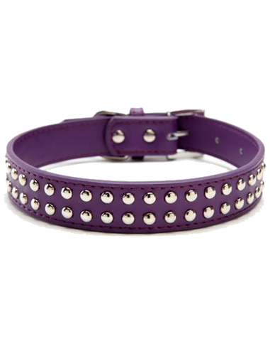 Purple leather stud dog collar