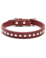 Maroon leather stud dog collar