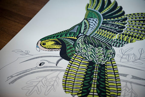Kakapo Ltd Edition Giclee