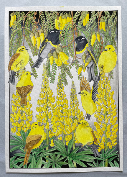 Original Yellowhammers and Hihi