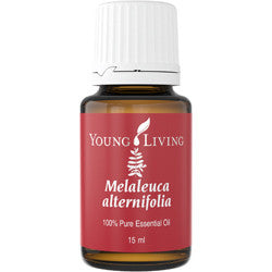 Young Living Melaleuca Alternifolia (Tea Tree) Essential Oil - The Essential Antiseptic Oil for skin, wounds and all homes - Chef and Divine