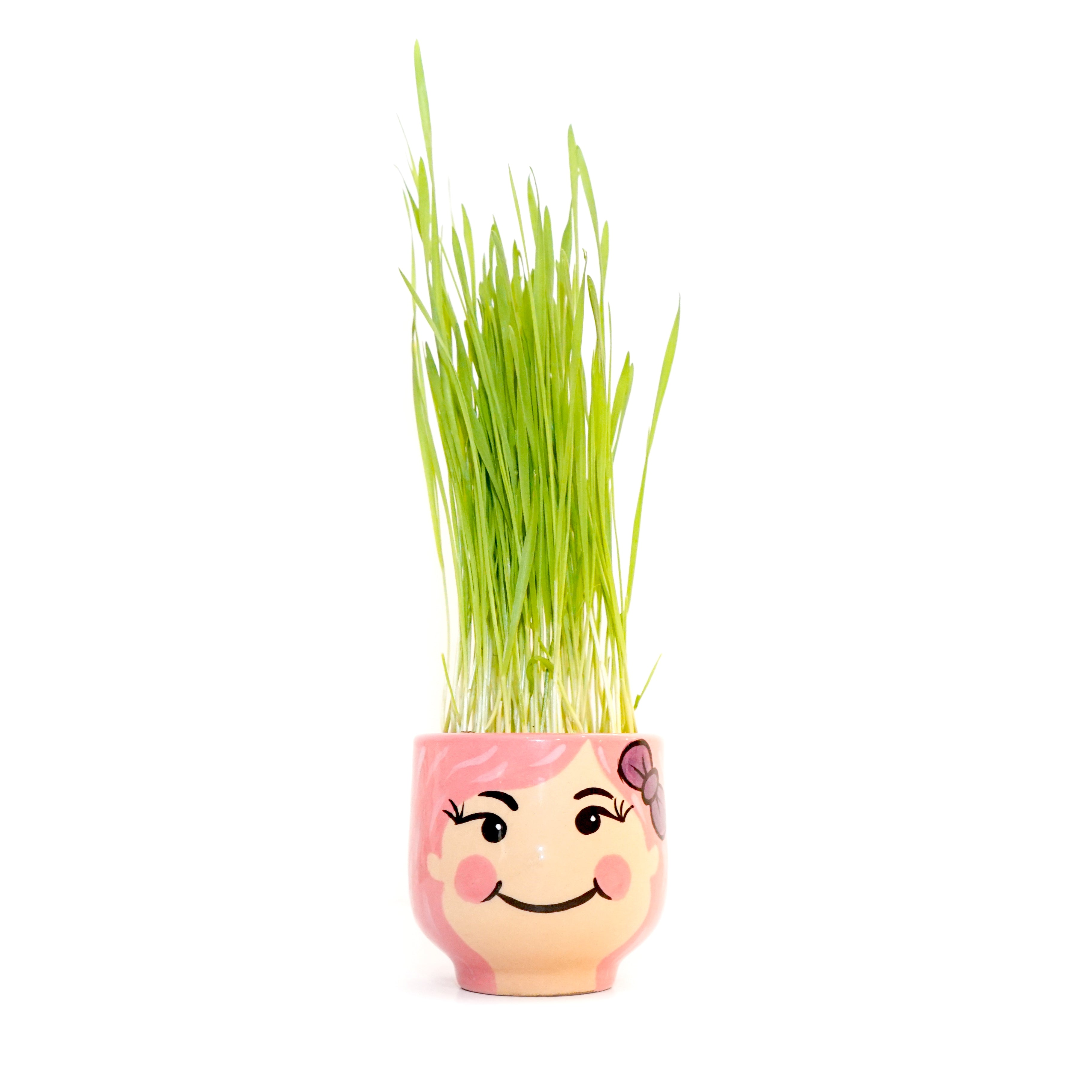 Fight for Jamin Wheatgrass Kit (Limited Edition)