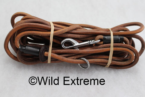 Leather Dog Training Lead