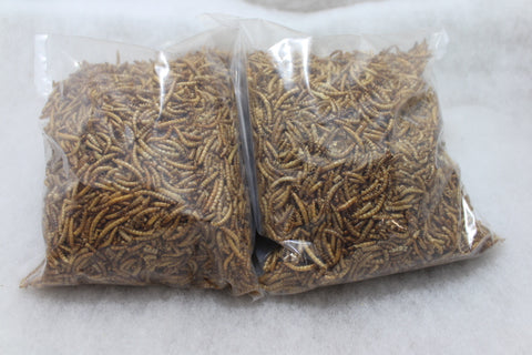 Mealworms 250g