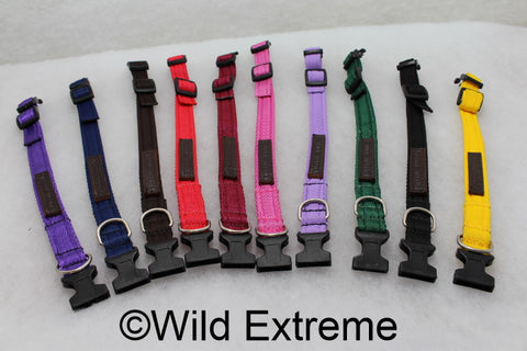 25mm Padded Webbing Dog Collar - Acetal Buckle (Large)