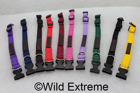 Small 20mm Padded Webbing Dog Collar