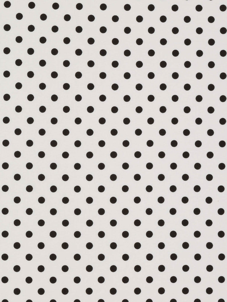 Fresh Polka Dot - Black