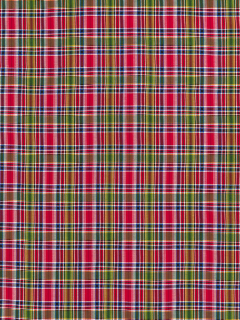 Apple For Teacher Plaid - Superfine Shirting - Fabworks Online