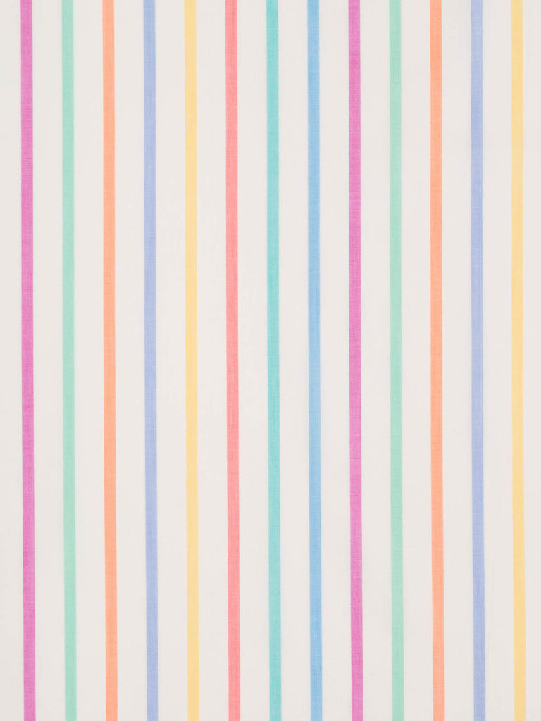 Rainbow Stripe - Narrow