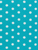 Aqua & White Polka Dot - Organic Cotton Interlock