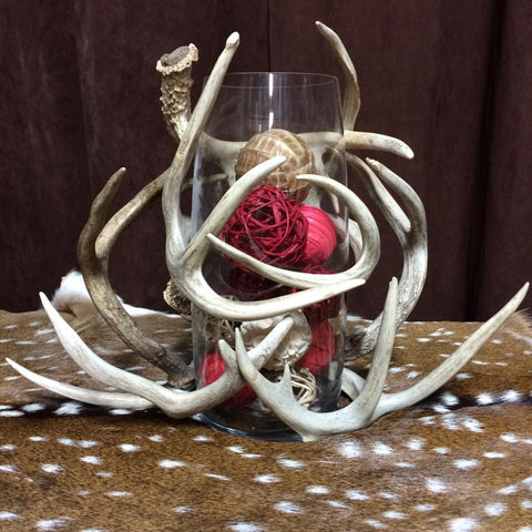 Whitetail Antler Vase