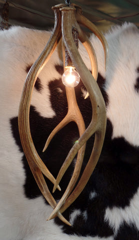 Axis Antler Pendant Lights