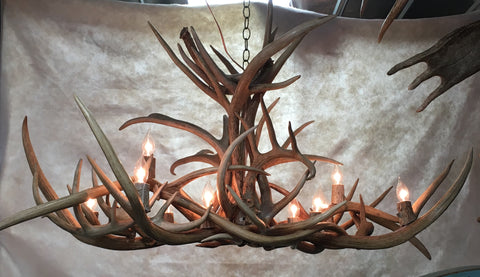 Axis & Whitetail Antler 10 Light Chandelier