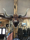 *SOLD* RED LONGHORN MOUNT NON-REMOVABLE HORNS