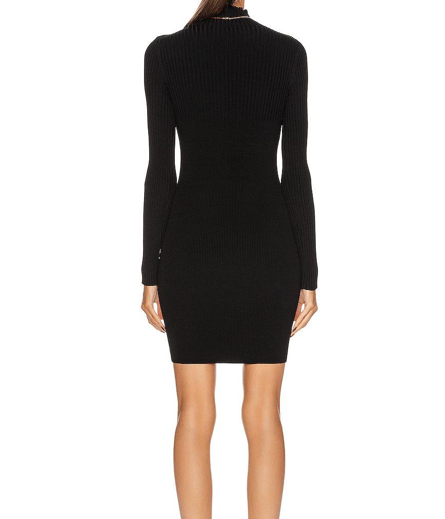 Jonathan Simkhai Corinna Compact Cut Out Knit Turtleneck Dress