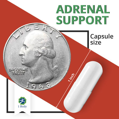 Adrenal Support - 3X Bundle