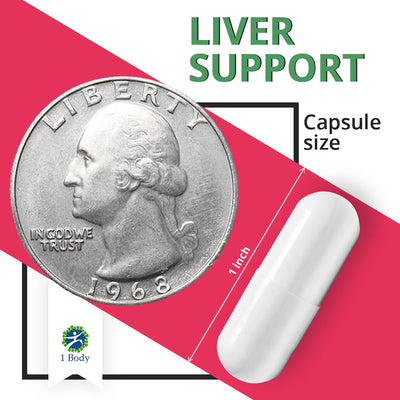 Liver Support ~ 6X Bundle
