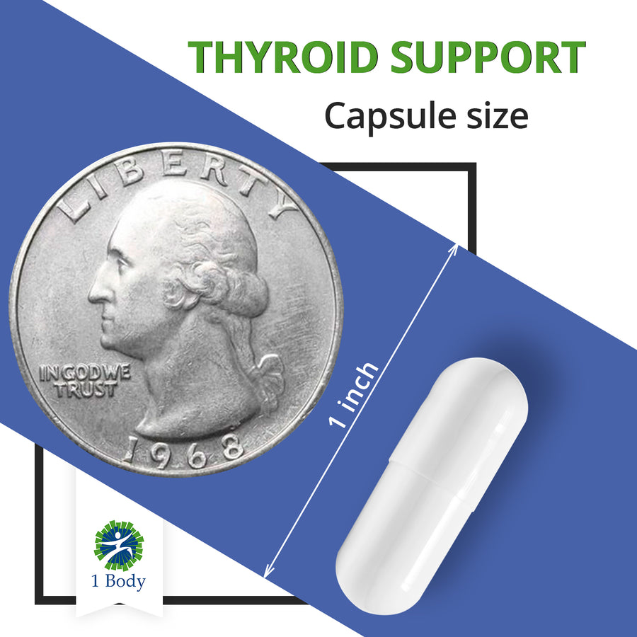 Thyroid Support - 3X Bundle