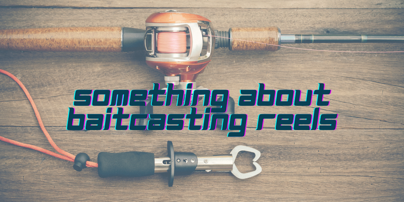BAITCASTING REELS 2018: Best Picks and Tips - Justforfishing.com