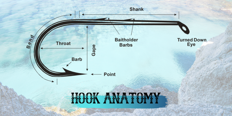The Hook's Law: The ultimate guide to selecting the best hook - Justforfishing.com