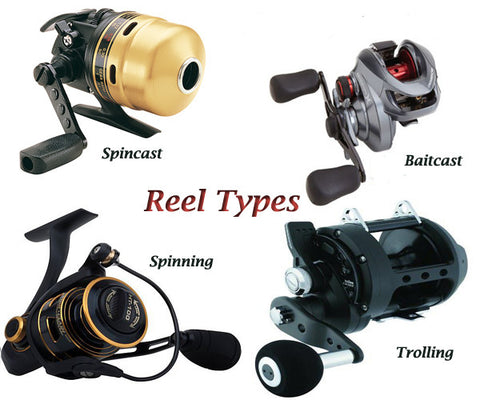 Types of Reels: The advantages & drawbacks