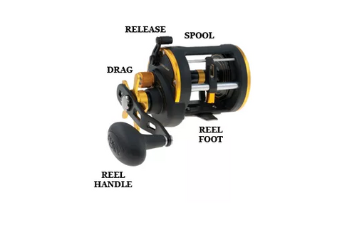 Trolling Reel Diagram