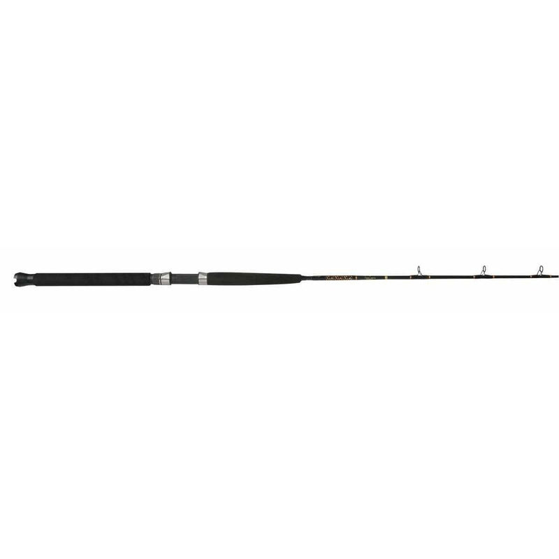 Star Rods Rod Star Rods Aerial JIGGING SPINNING & CONVENTIONAL