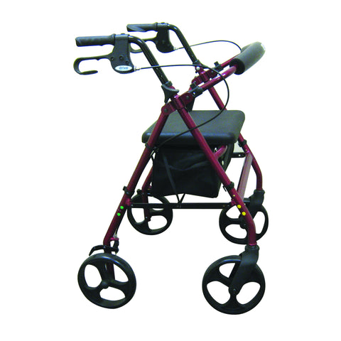 Aluminum Rollator with Removable Wheels by Drive Medical
