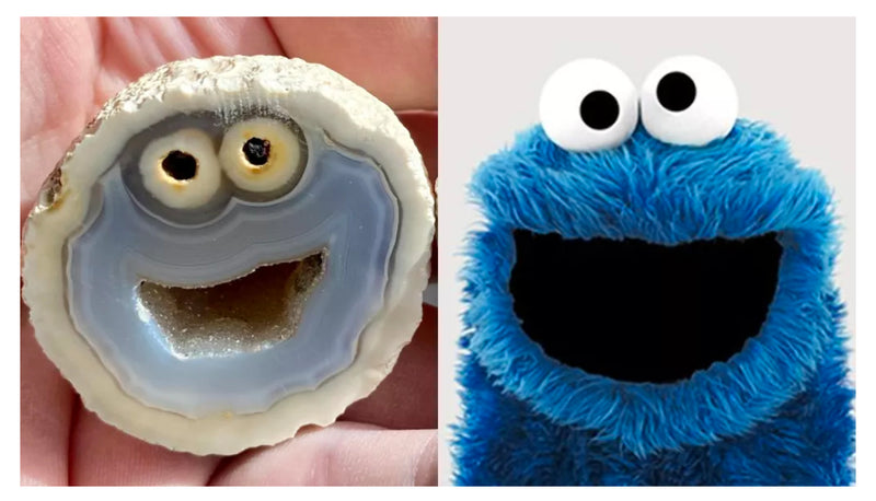 You're Seeing... Cookie Monster?!