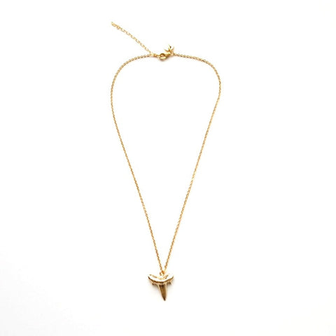 Shark Tooth Pendant Necklace in Gold