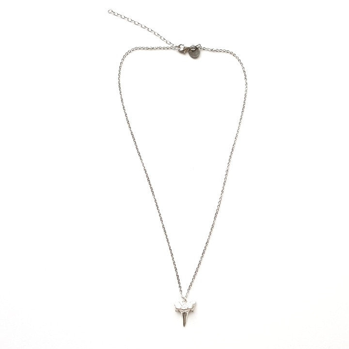 Shark Tooth Pendant Necklace in Silver
