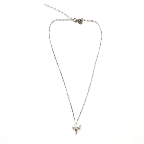 Image of Shark Tooth Pendant Necklace in Silver