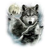Three Wolves T-Shirt
