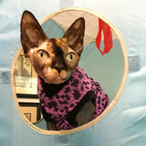 Leopard cotton waffle knit sohynx shirt fir your peterbald, cornish rex, donskoy, devon rex! cat clothes
