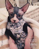 Alexander Henry Blue Skulls - Nudie Patooties  Sphynx cat clothes for your sphynx cat, sphynx kitten, Donskoy, Bambino Cat, cornish rex, peterbald and devon rex cat.