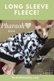 Sphynx cat clothes, shirts and sweaters.
