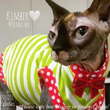"Christmas Lime Stripe and Polka Dot Shirt ""Making Spirits Bright"" - Nudie Patooties  Sphynx cat clothes for your sphynx cat, sphynx kitten, Donskoy, Bambino Cat, cornish rex, peterbald and devon rex cat."