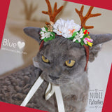 Christmas Reindeer Hat for Cats - Nudie Patooties  Sphynx cat clothes for your sphynx cat, sphynx kitten, Donskoy, Bambino Cat, cornish rex, peterbald and devon rex cat.