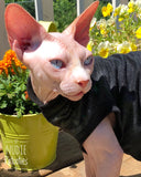 Black Sparkly Shirt - Nudie Patooties  Sphynx cat clothes for your sphynx cat, sphynx kitten, Donskoy, Bambino Cat, cornish rex, peterbald and devon rex cat.