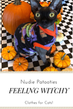 Being Witchy! Witch fleece for your sphynx cat and kitten.  Halloween cat shirt