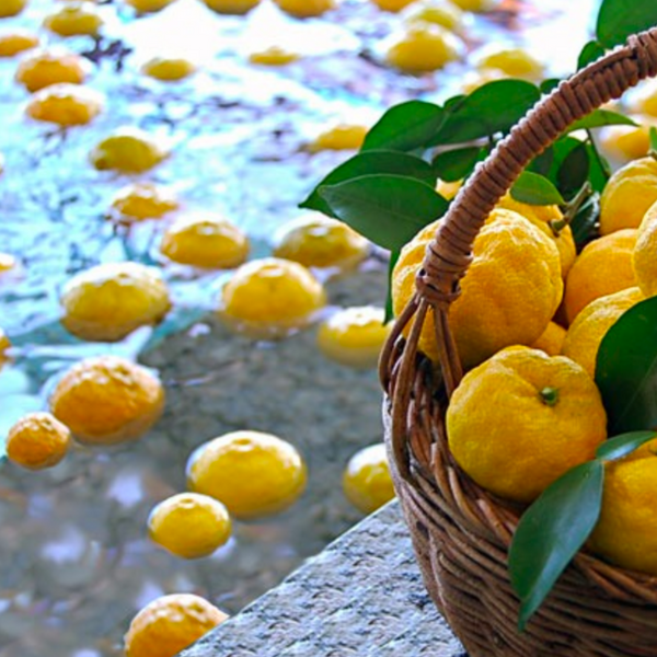 An Amazing Citrus  - Yuzu