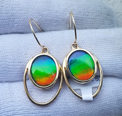 Ammolite Earrings 14kt Gold