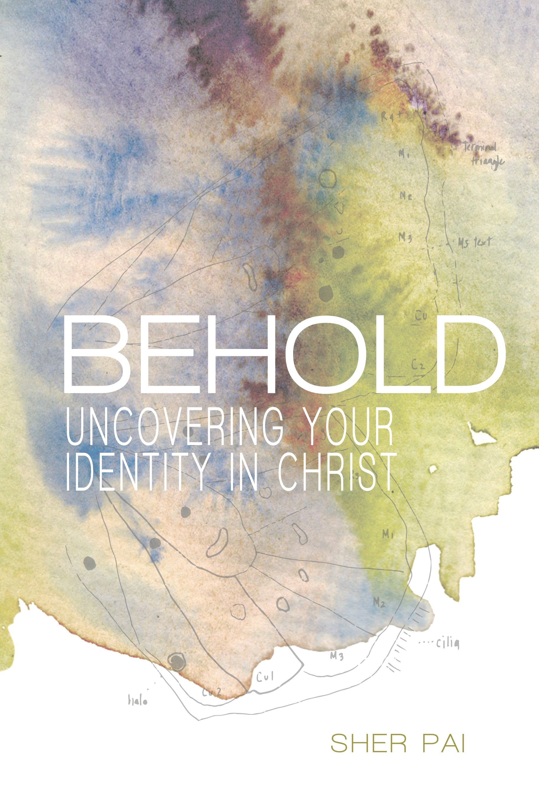 Behold: Uncovering Your Identity in Christ